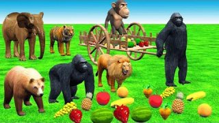 Wild Animals Learn Fruits with Wooden Cart Toys for Kids | Gorilla and Zoo Animals Cartoons for Kids